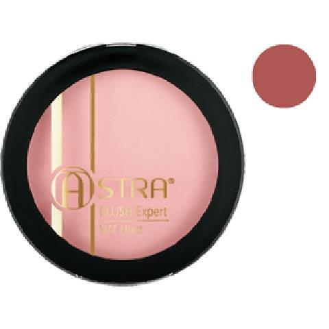 ASTRA BLUSH COMPATTO EXPERT BLUSH MAT EFFECT  06 *