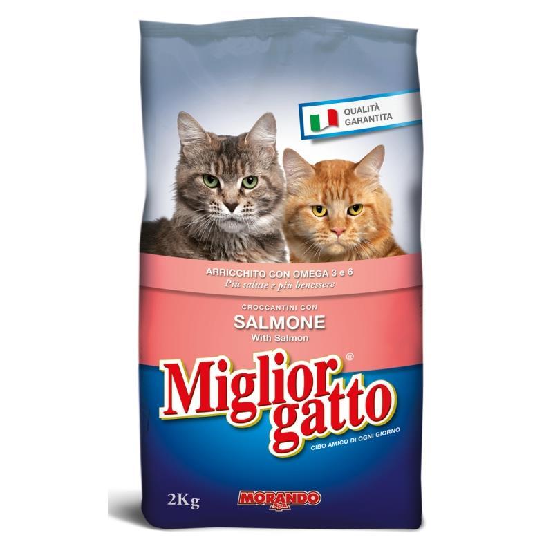 Miglior g sacco 2 kg secco salmone cibo per gatti for Miglior cibo per gatti